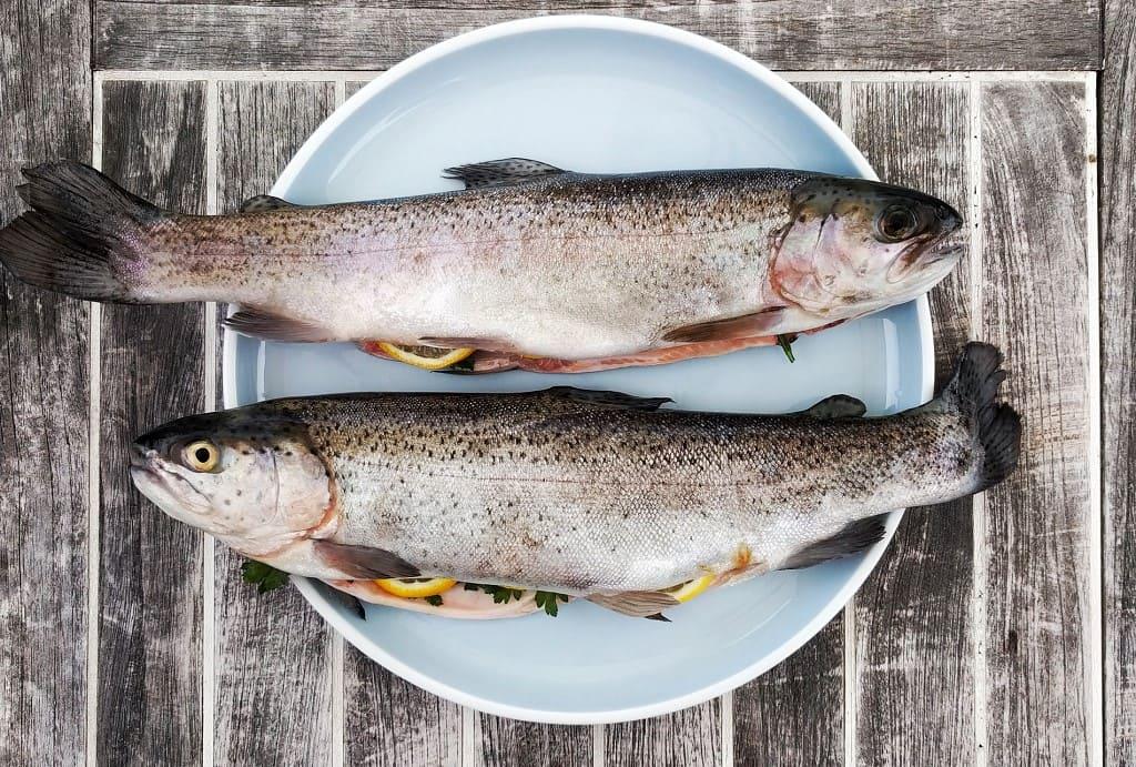 Quali-sono-i-pesci-ricchi-di-omega-3