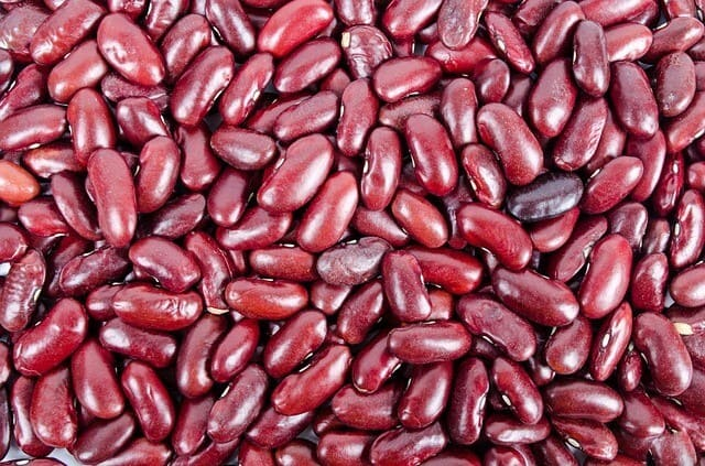 Fonti-vegetali-di-omega-3-Fagioli-rossi