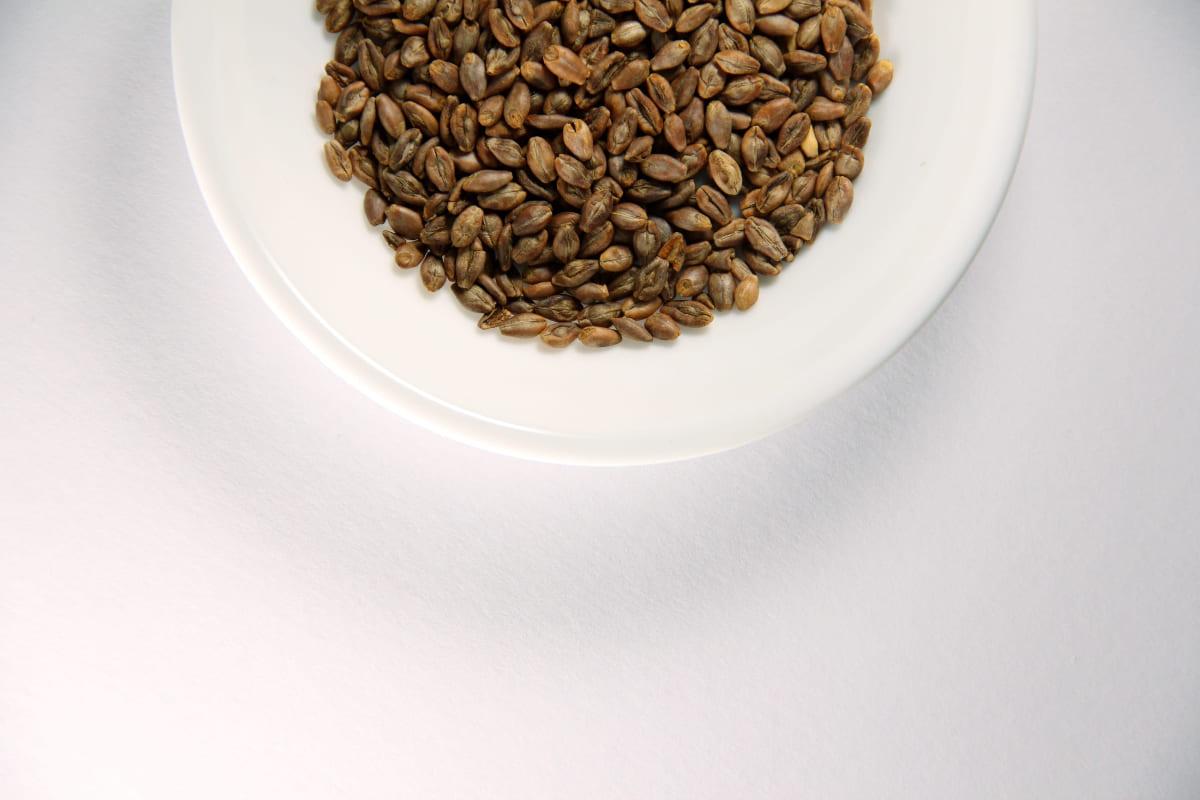 Fonti-vegetali-di-omega-3